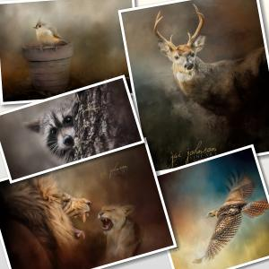 Five New Wildlife Paintings This Week